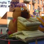 Pirata Trago¦ün