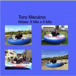 Toro mecanic 1